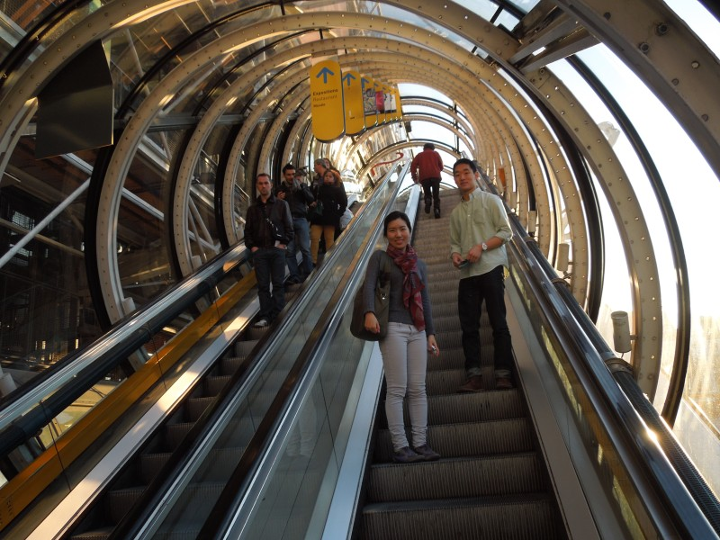 Tube-encased, semi-exterior escalators